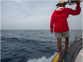 OCEANSWELL'S MARINE CONSERVATION CONVERSATIONS 3