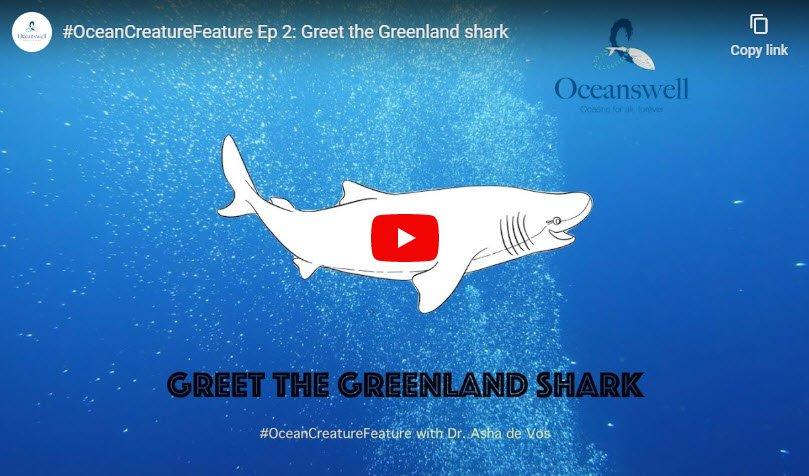 Episode 2: Greet the Greenland shark 9