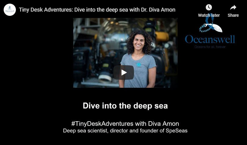 Episode 5: Dive into the deep sea 5