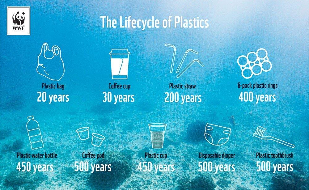 Hidden life on marine plastics 1